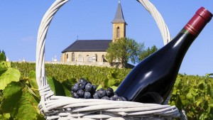 photo beaujolais 1
